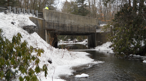 P3 Bridge Project